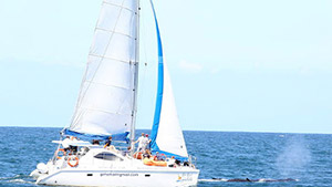 Sunshine Coast Sailing Cruises